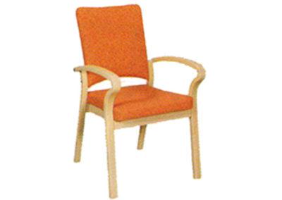 Chaise 38-25-1